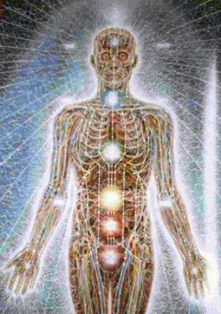 Anatomia oculta do corpo humano